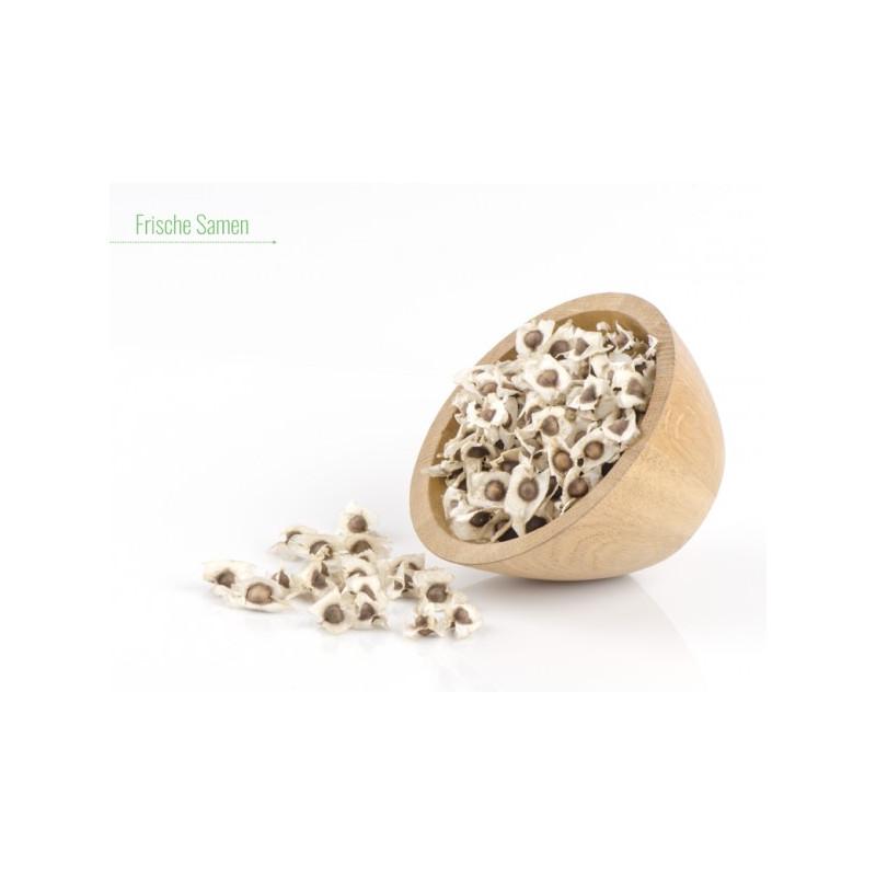 50 g Teneriffa Samen entsprechen ca. 125 bis 150 Samen