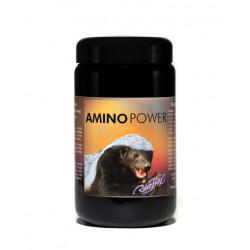 Amino Power Kapseln