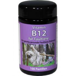 Vitamin B12 Pastillen 100 Stück
