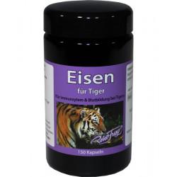 Eisen für Tiger