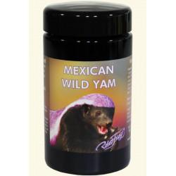 Mexican Wilde Yamswurzel