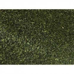 100g Bio Moringablatt als Tee oder für Speisen Aethiopien