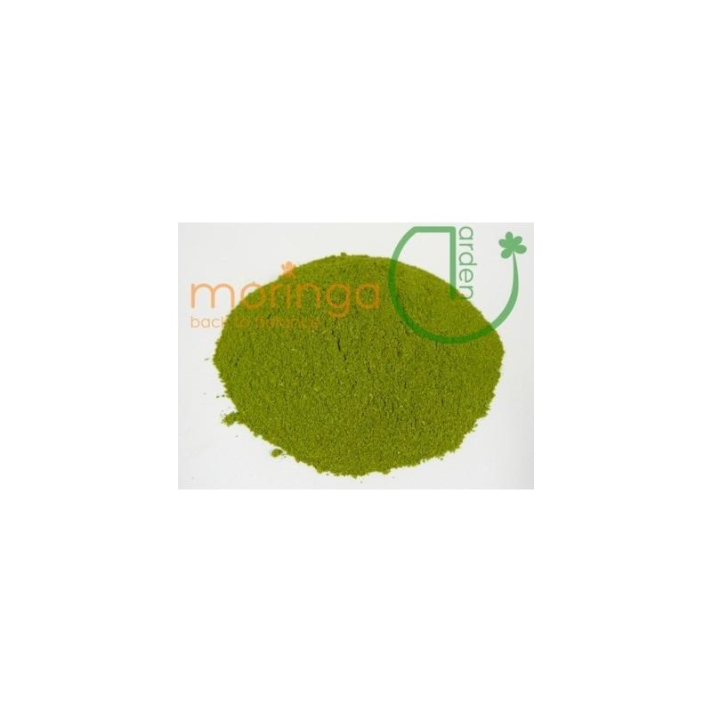 Moringa Pulver Premium 100g