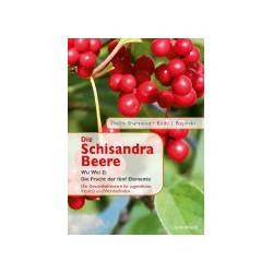 Die Schisandra Beere
