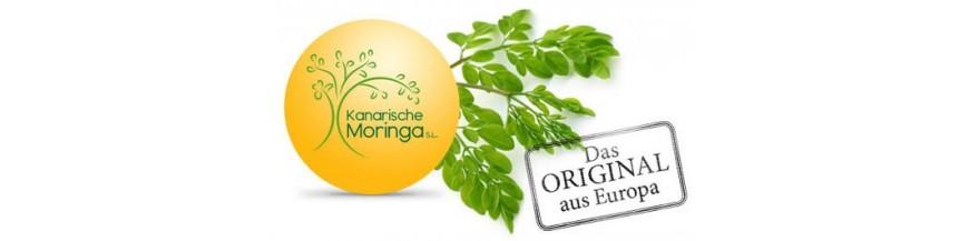 Gran Canaria Bio Moringa Premium Qualität